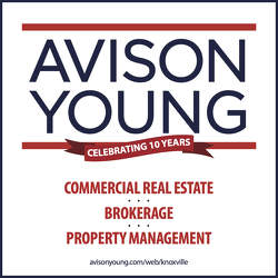 Avison Young Commercial Real Estate Logo